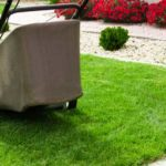 Want To Improve Your Lawn? Three Ways To Do It